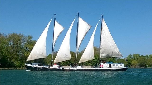Die Grietje segelnd kurz vor der Ankunft im Hafen